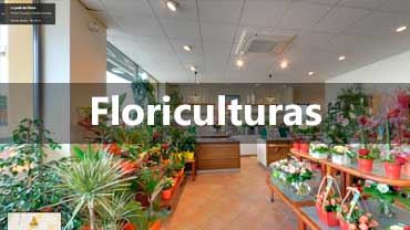 Street View Trusted para Floriculturas