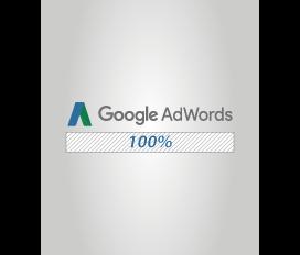 Agência 100_ Google AdWords