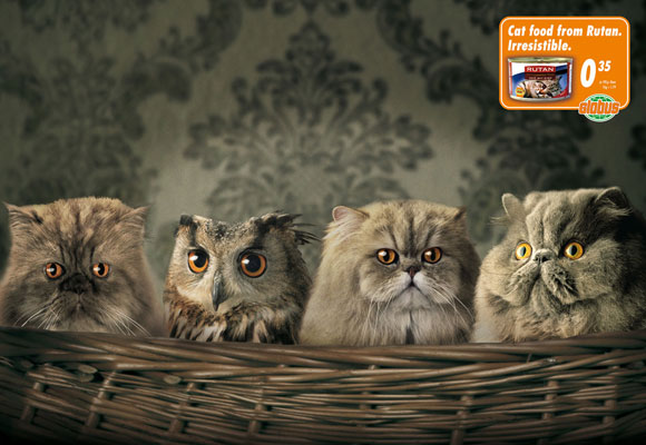 Anúncios criativos com animais